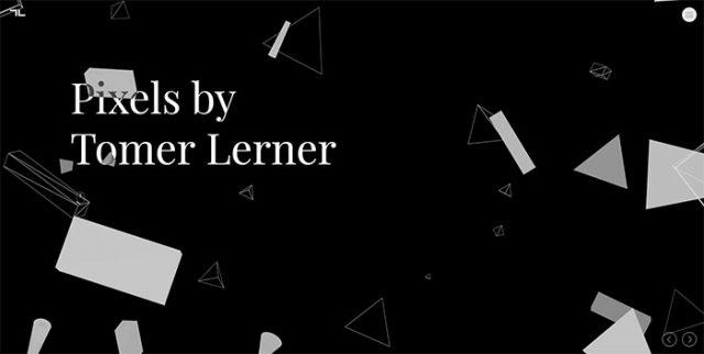 Tomer Lerner