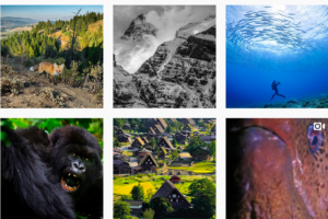 世界観に巻き込む!ナショナルジオグラフィックに学ぶ、Instagramストーリーテリングのコツ