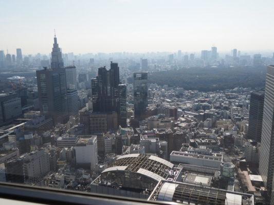 新宿を一望